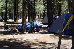 Mammoth Lakes tent camping site